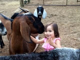 Mimi the Goat Whisperer