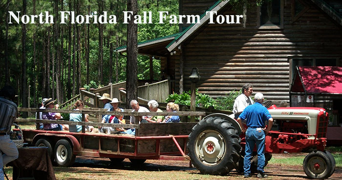 North Florida Fall Farm Tour