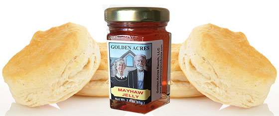 Buscuits and a small jar of Mayhaw Jelly from Golden Acres Ranch