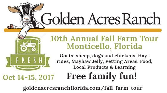 Fall Farm Tour at Golden Acres Ranch