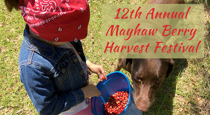 12th Annual Mayhaw Berry Harvest Festival 2018