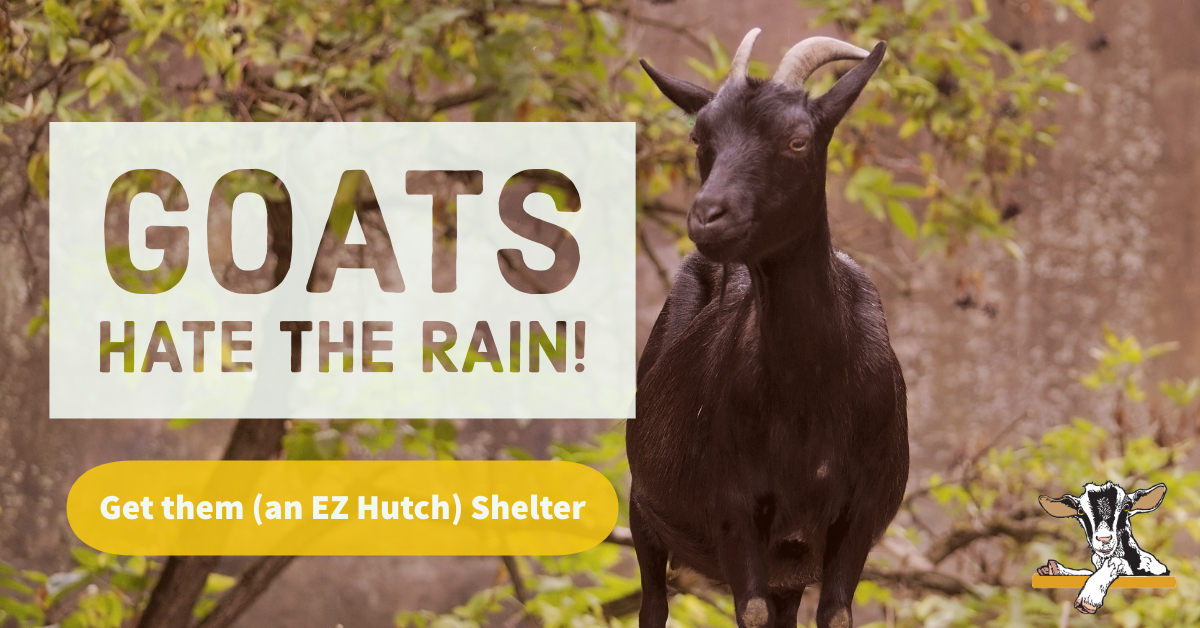 Tired of Mucking Out Your Livestock Shelters? | Portable Goat Shelters
