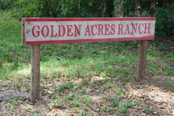 Photo of Golden Acres Ranch sign at the driveway entrance