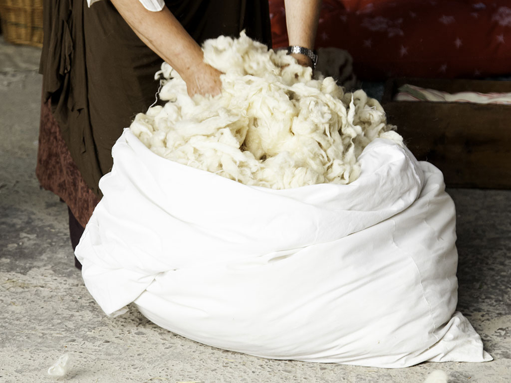 Bag of sheep wool